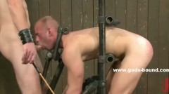 Tatooed Hunk Whipped While His Cock Is Sucked Getting Prepared Fo