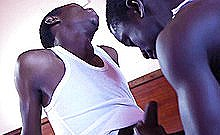 Dark Africans Rony And Jay Bareback