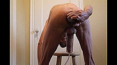 Wild Cock And Ass Play Fucking And Cumming