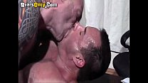 Hirsuite Studs Cumming Hard